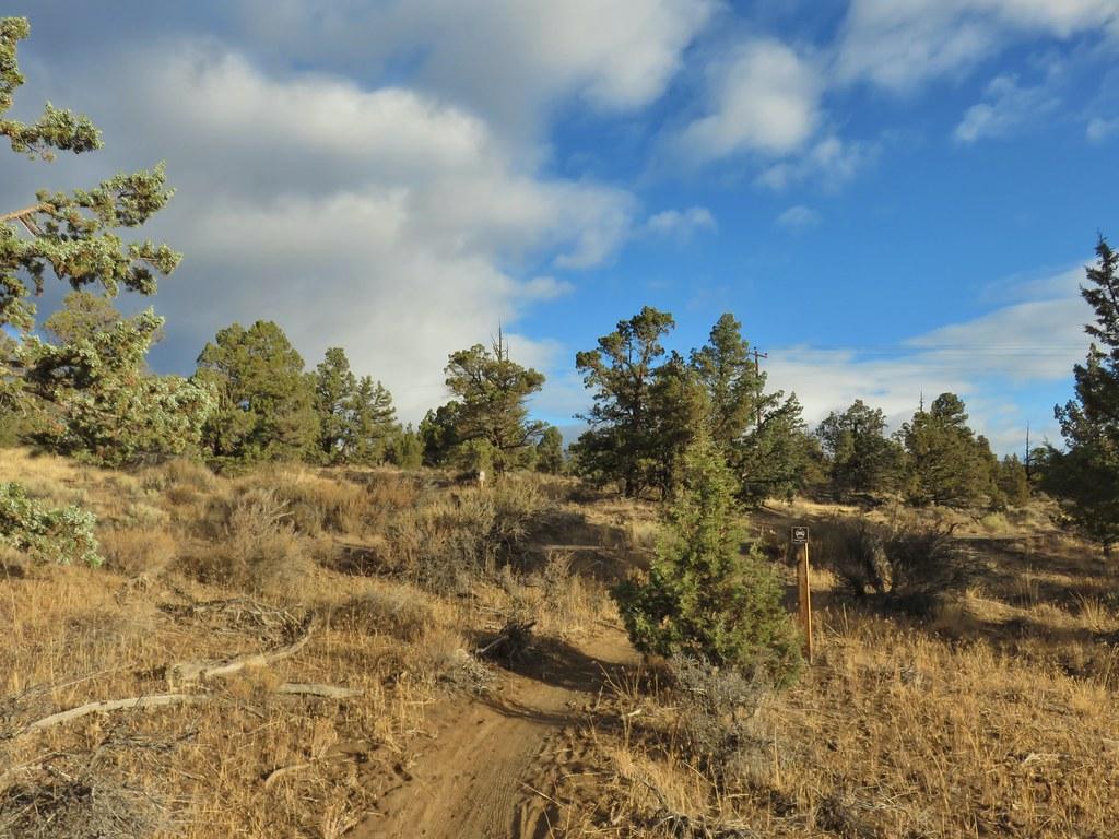 Rockbar Trail
