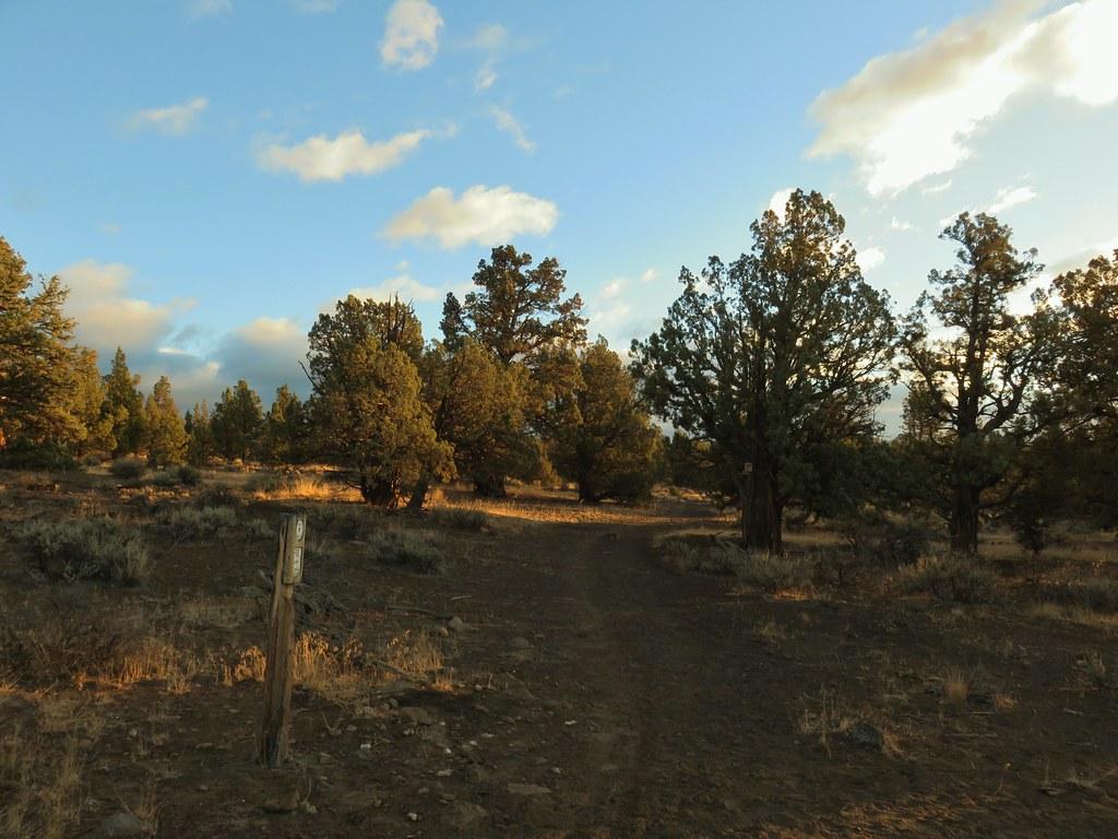 Settlement Trail