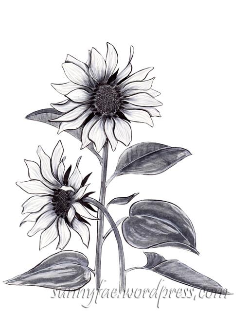 10 sunflowers