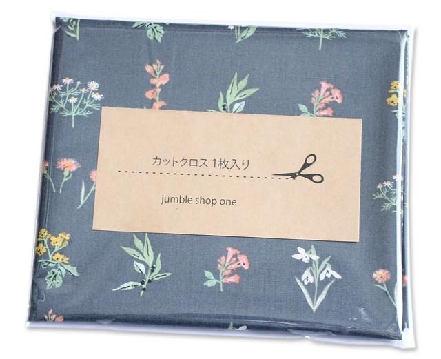 カットクロス Art Gallery Fabrics Picturesque Botanical Study Soft