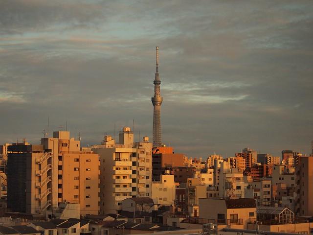 Evening light over the city