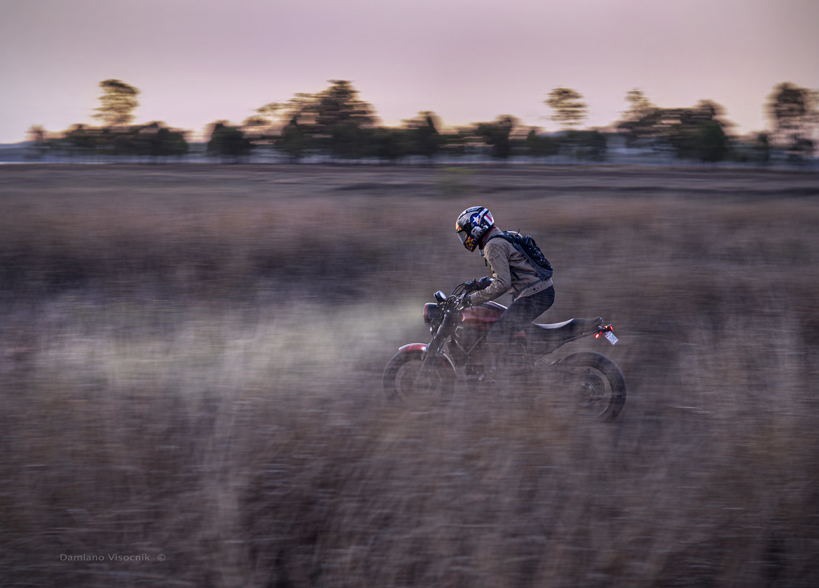 speeding through the grass_b_JX090216
