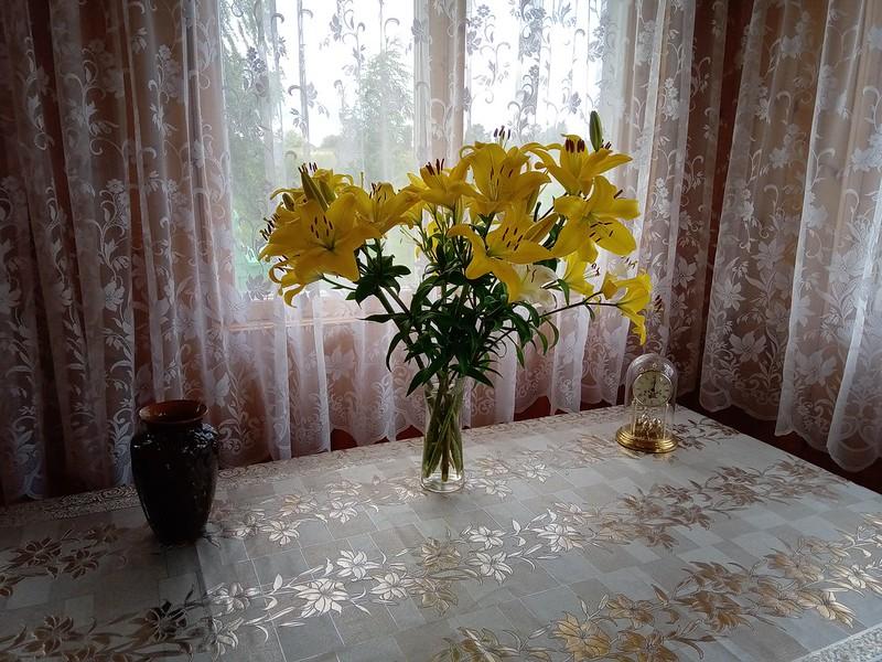 Лилейник жёлтый в террасе