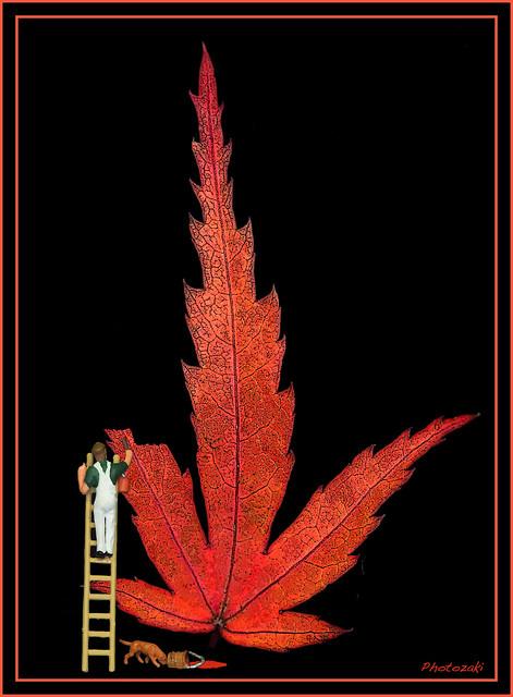 Autumn Leaf Artist