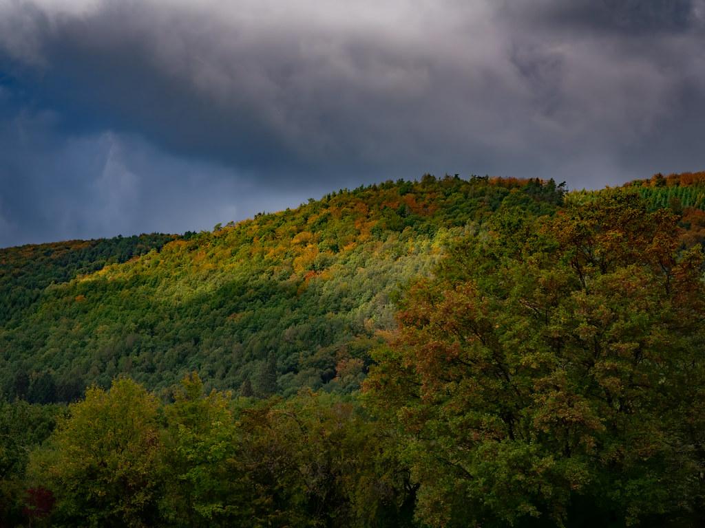 Début d'automne dans les Vosges du Nord... 50461367081_8841839dee_b