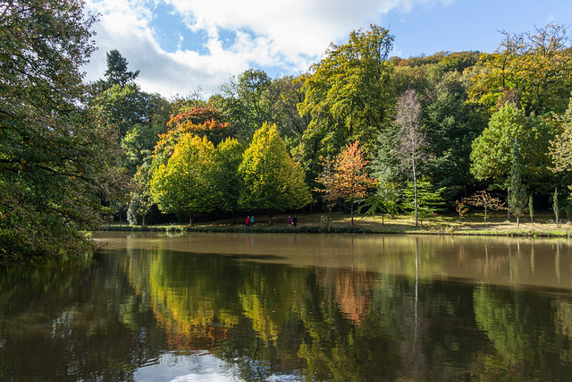 Autumn reflections (20201011 1146_2)