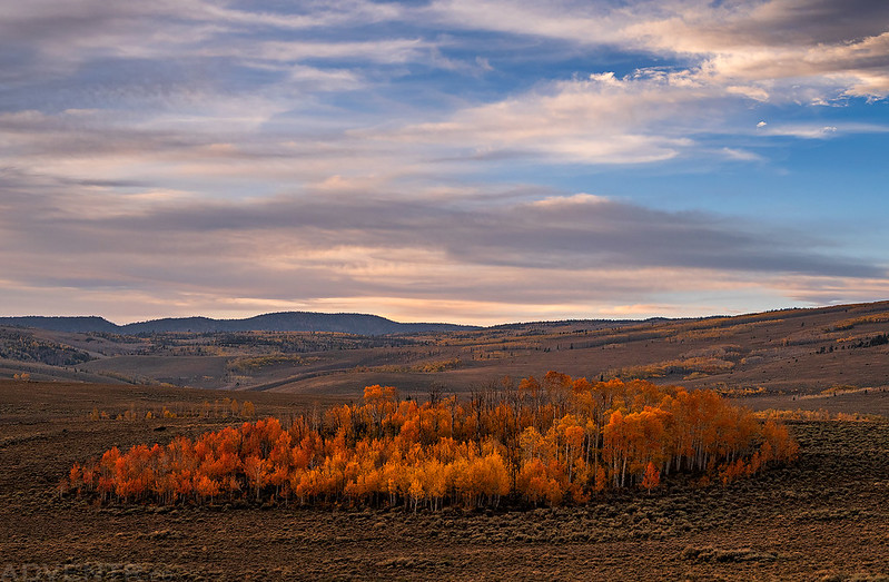 Utah Fall Colors