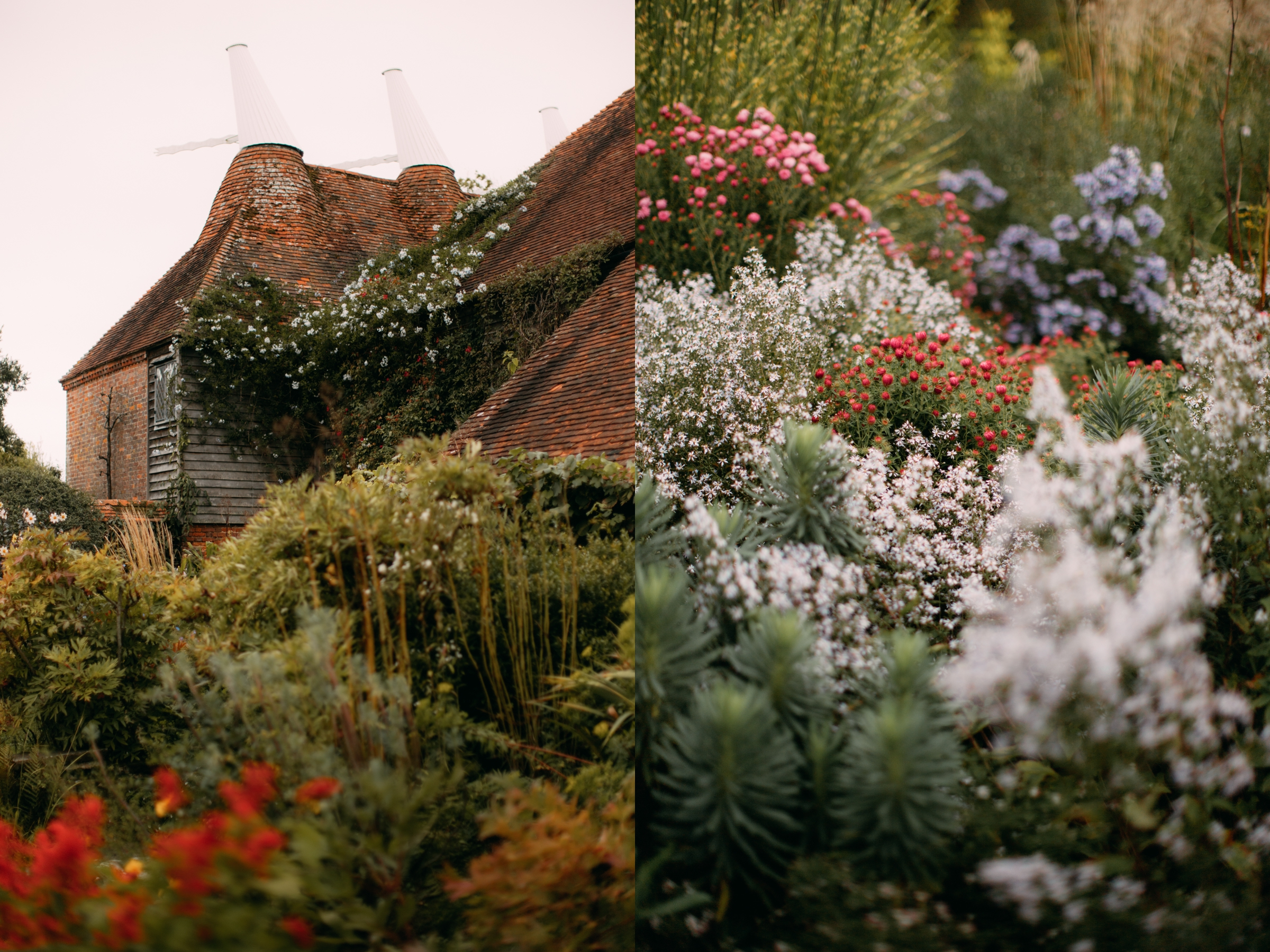 garden-15-side