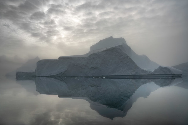 Icebergs and Fog, Rodefjord, Greenland