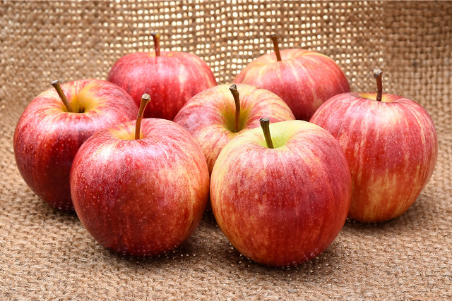 Fall-harvest-apple-guide