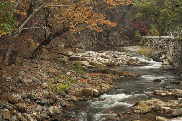 South Korea:  Autumn At Tongdosa Creek