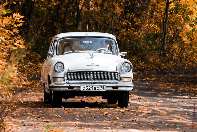 A magnificent GAZ M21 Volga