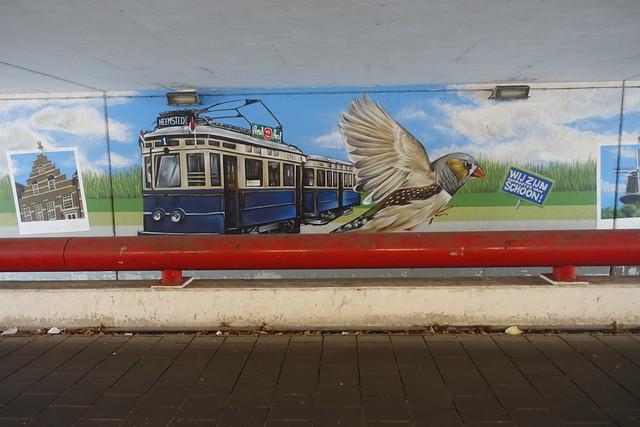 Tussen Leiden en Den Haag