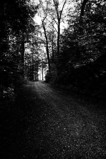 a dark path lies ahead
