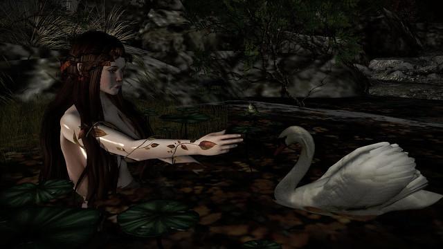 The Swan of Tuonela..