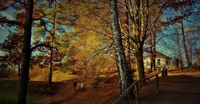 Stuttgart, Herbst am Bärenschlössle,  Autumn series ,60004//13069