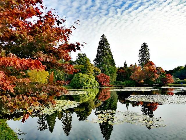Sheffield park, Sussex