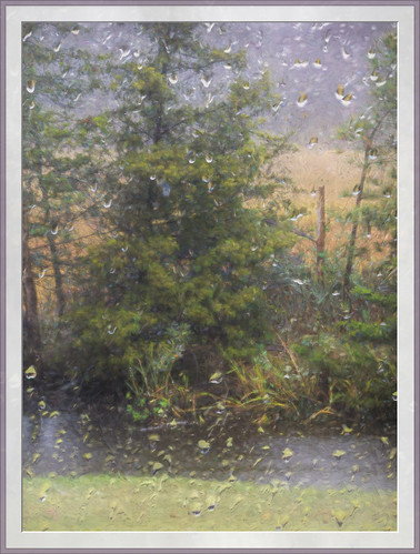 select rain hurricane tropicalstorm delta window pane waterdroplets gray mood
