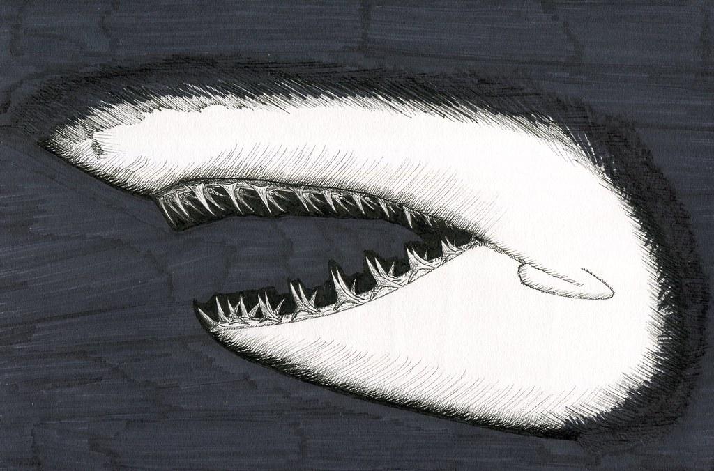 Inktober 2020 Day 8 - Teeth