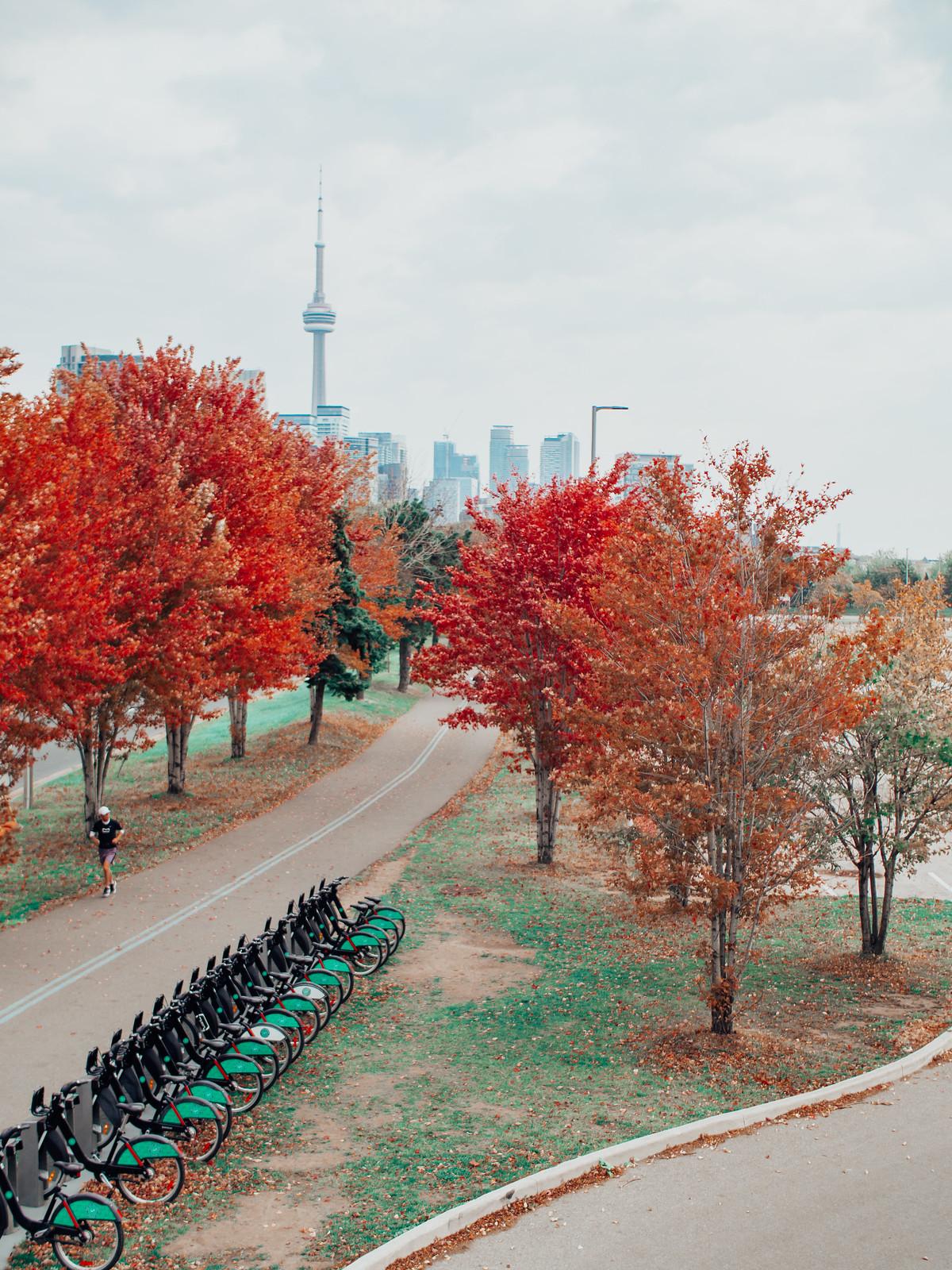 Fall in Toronto