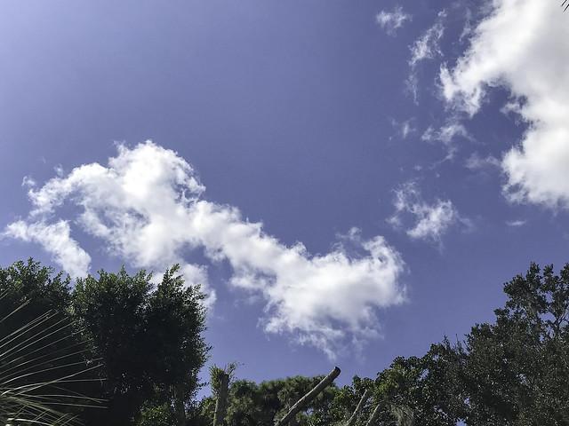 Another Beautiful Sky