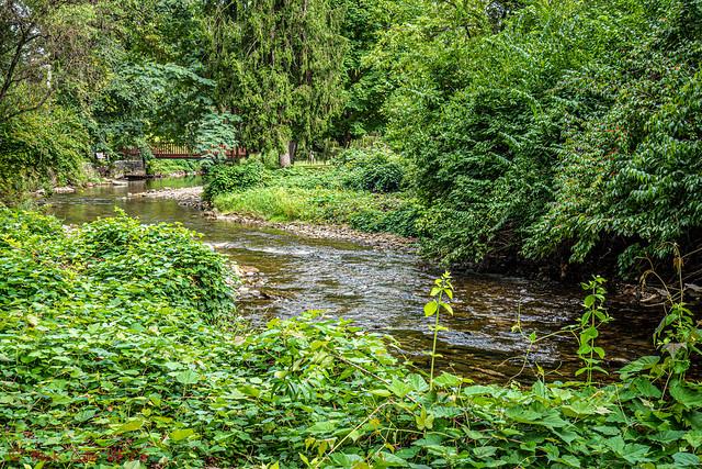 Greens Around Wyomissing Creek (explored)