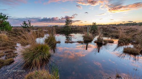 Holt heath sunset (explored)