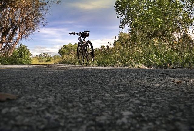 Coyote Creek Regional Bicycle Trail