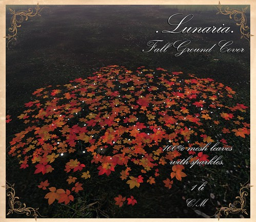 Fall Ground Cover Group Gift