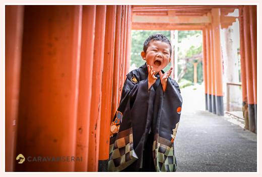 男の子の七五三 神社の鳥居でいないいないばあっ!
