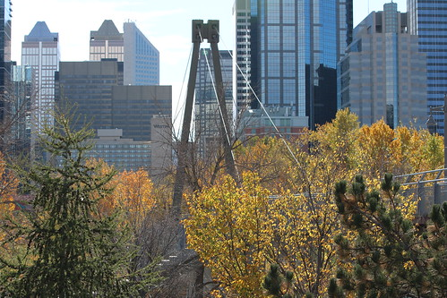 Fall colours downtown Calgary October 2020 | by davebloggs007