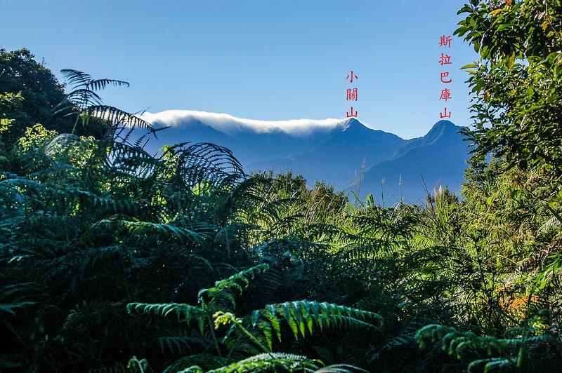 新望嶺東南稜(1534 m)東南眺小關山、斯拉巴庫山 1-1