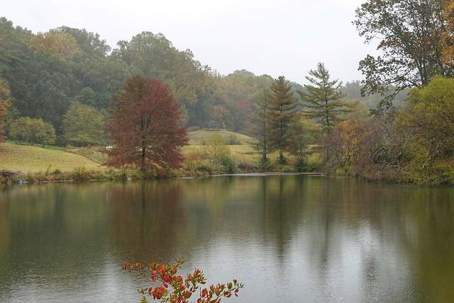 A Raining autumn afternoon