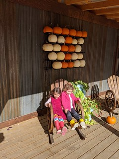 Pumpkin Patch Kids | by Canadian Veggie