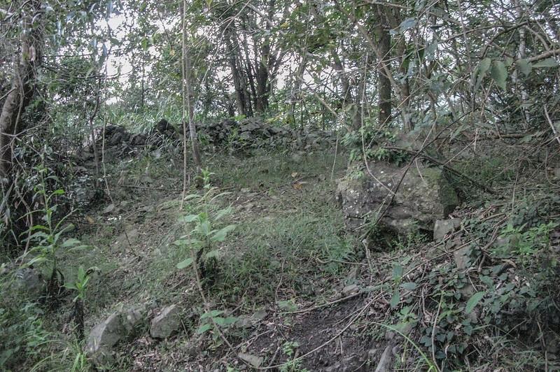 新望嶺產道山徑上切處駁坎遺跡