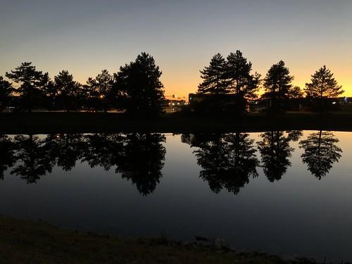 sunset dusk evening landscape reflection pond silhouettes trees firehousegrill autumn october cincinnati oh ohio cincinnatiohio iphone jennypansing explore explored