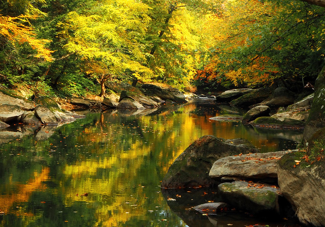 PA Autumn