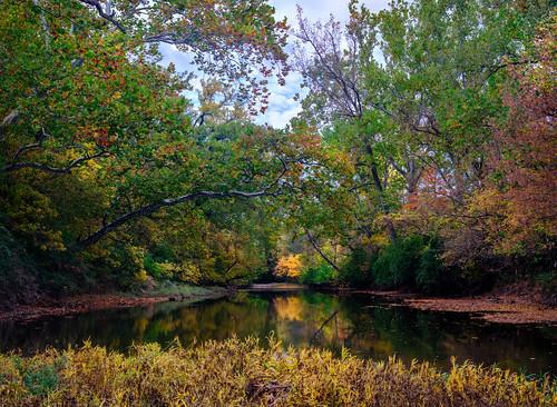 fujifilm fuji fall fallcolors velvia gfx100 focusstack landscape landscapephotography ohio ohiolandscape columbusoh
