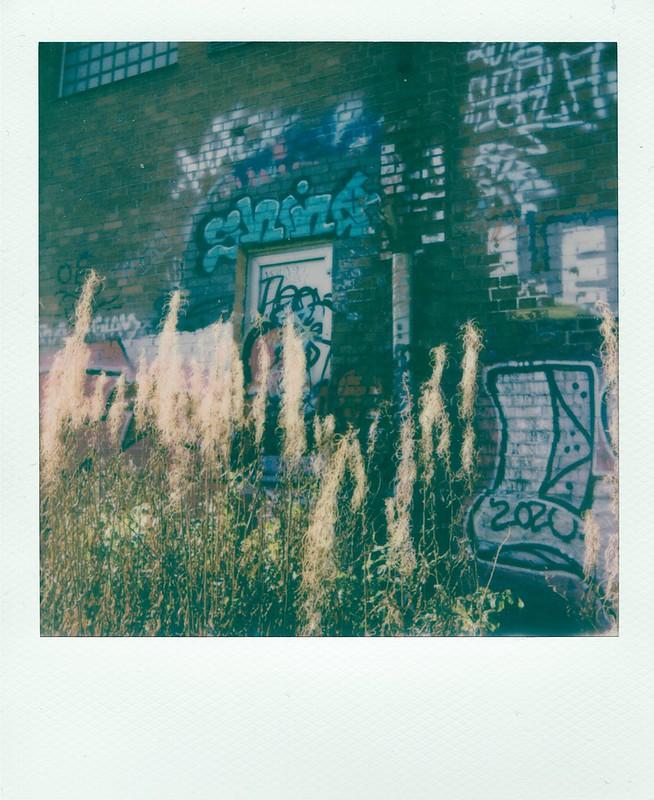 Polaroid_10_2020_3
