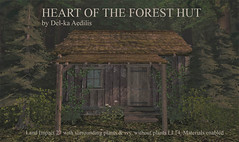 Heart of the Forest Hut