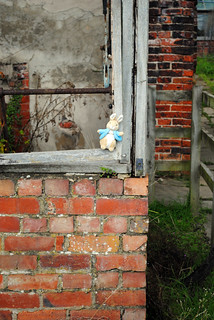 Peter Rabbit in the Walled Garden | by zawtowers