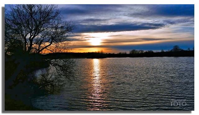 (Explore) Blaue Stunde am großen Teich - Blue hour at the big pond
