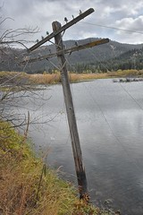 Telegraph Pole Adjacent to Milwaukee Road Track Bed near Byrne Montana