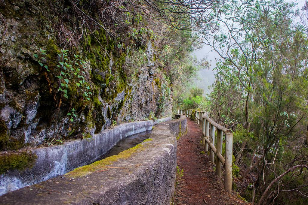 Sendero de los Nacientes de Marcos y Cordero en La Palma