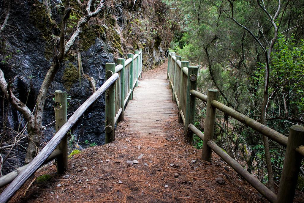 Puente de madera en el sendero de Marcos y Cordero