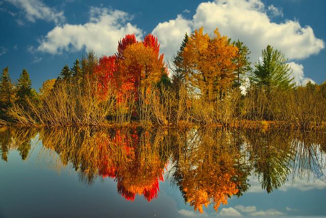 Across Deer Creek:  Fall Color