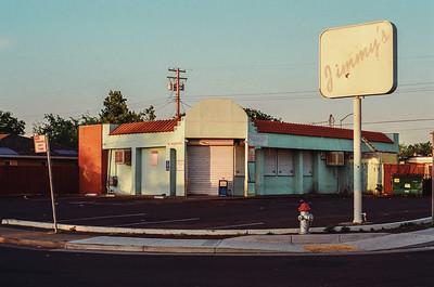 LeicaFlex SL + Kodak Pro Image 100