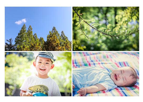 愛知県緑化センダーで家族写真撮影 秋の抜けるような青空