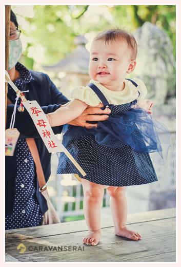 愛知県豊田市の挙母神社 お兄ちゃんの七五三に来た女の子赤ちゃん