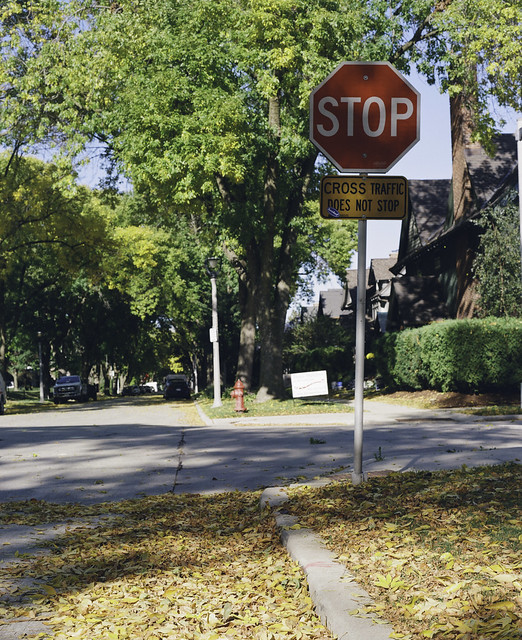 Stop for leaves